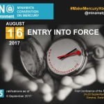 Conference of the Parties to the Minamata Convention on Mercury (COP1)