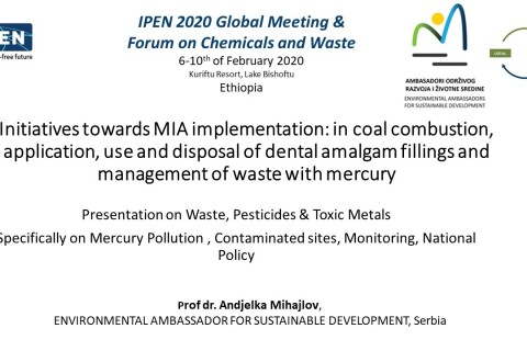 Global Meeting  & Forum on Chemicals and Waste, 2020