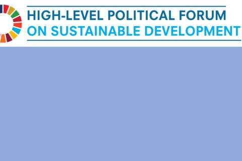 EASD join the process of preparation for High Level Political Forum 2020