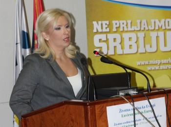 EnE13-ENV.net 2013  Mihajlovic uvodni govor