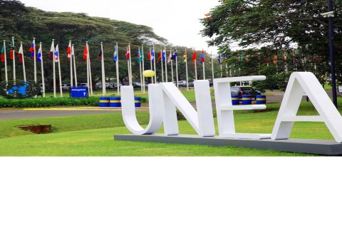 Virtually we are in Nairobi: participating at The Global Major Groups and Stakeholders Forum , the fifth meeting of the Open-Ended Meeting of the Committee of Permanent Representatives, Science-Policy Forum and the UN Environment Assembly (UNEA 5.1)