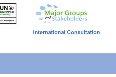 In advance of UNEA 5.2: EASD participated in the International Consultation for Major Groups & Stakeholders